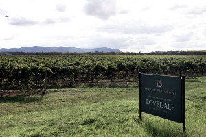 Lovedale-vineyard-600x400